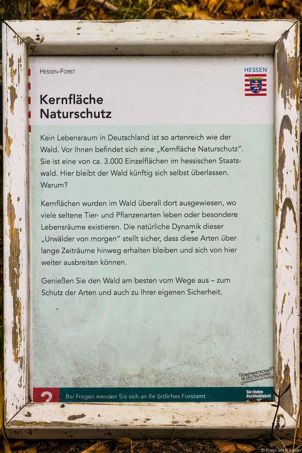 Prozessschutz_Wuestegarten_01