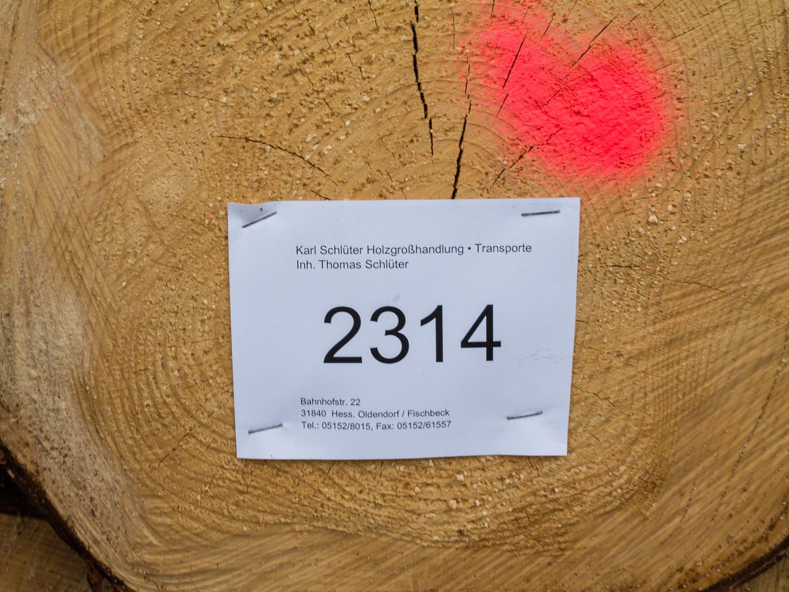 Fichtenstämme für den Holzgroßhandel