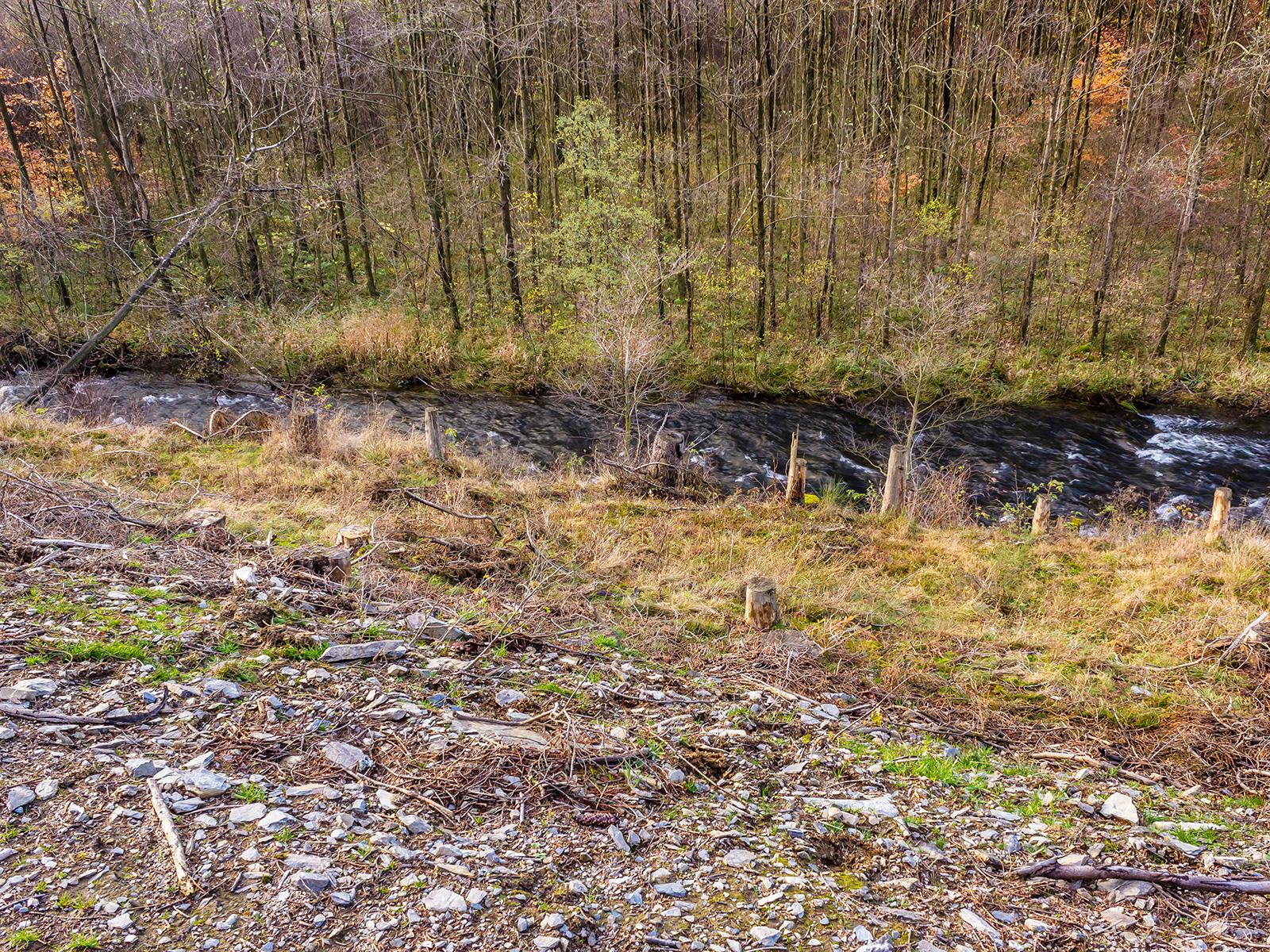 Boden, der durch Erosion die Humusschicht verloren hat