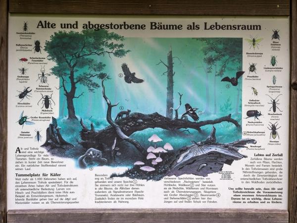 Informationstafel über Totholz