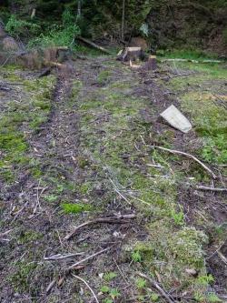 tiefe Rückespuren in oberer Bodenschicht
