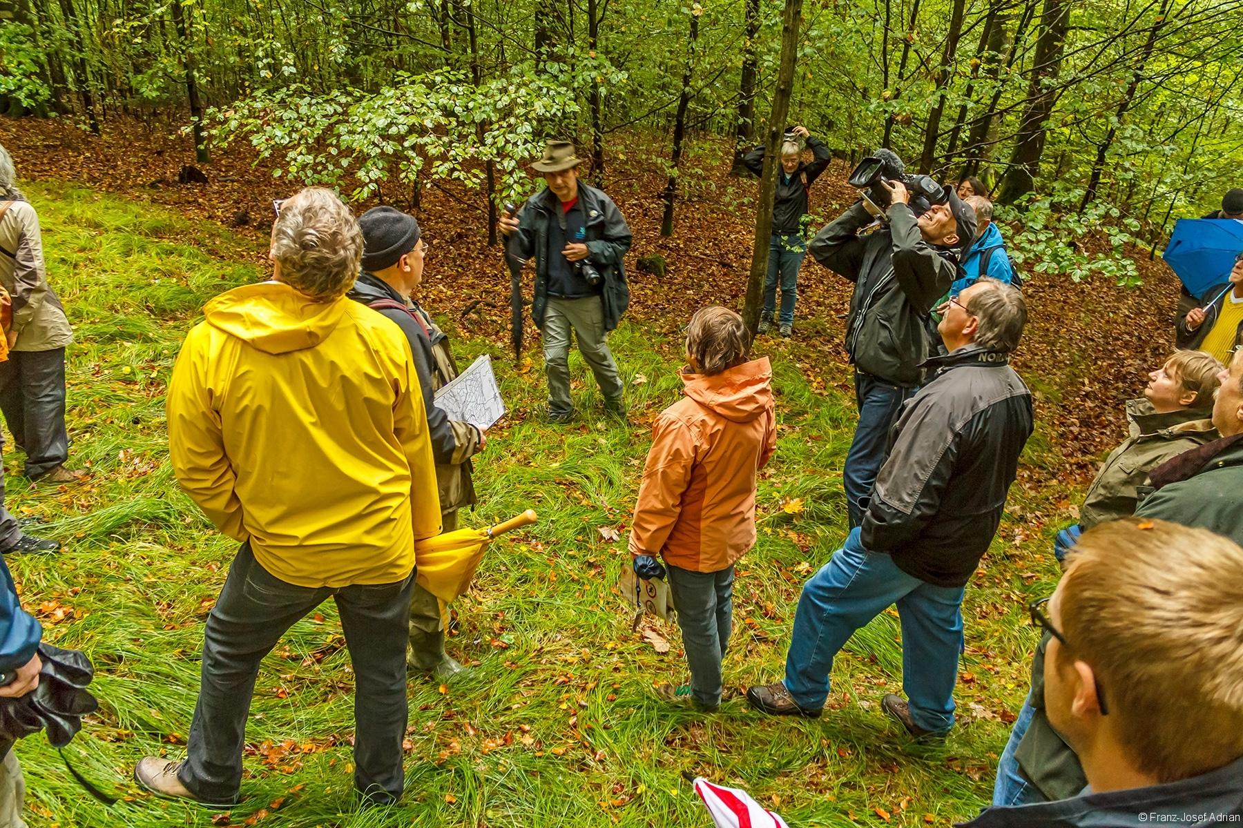 Dreharbeiten auf kleiner Lichtung in der Waldabteilung Pflanzung