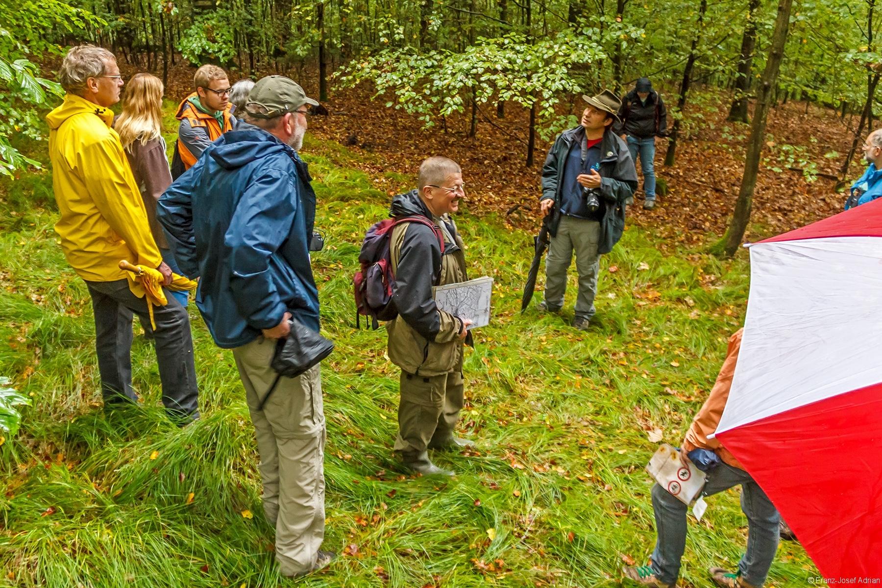 Straußberger erklärt den Aufbau des zweischichtigen Buchenwalds
