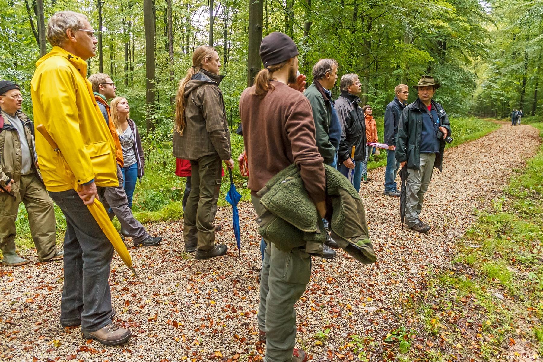 Exkursionsgruppe in der Waldabteilung Winterrangen