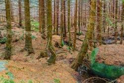 riesige Granitblöcke im unteren Teil des Schneelochs