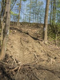 Rückegasse mit tiefen Bodengleisen
