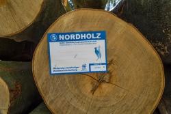 """""""Nachhaltige Waldbewirtschaftung"""""""