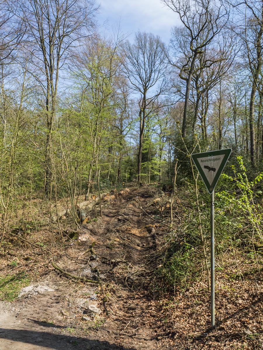 Rückegasse neben Schild zum Naturschutzgebiet
