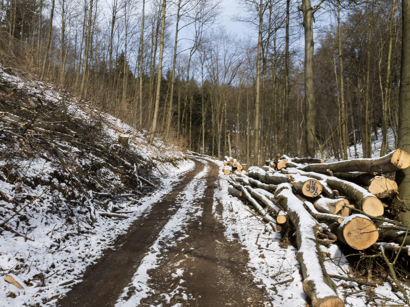 Holzlagerplatz an der Hünenburg