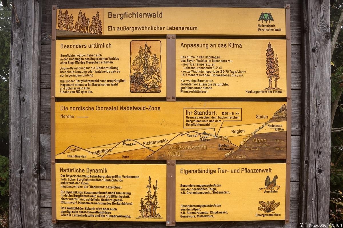 Informationsschild_NLP_Bayerischer_Wald