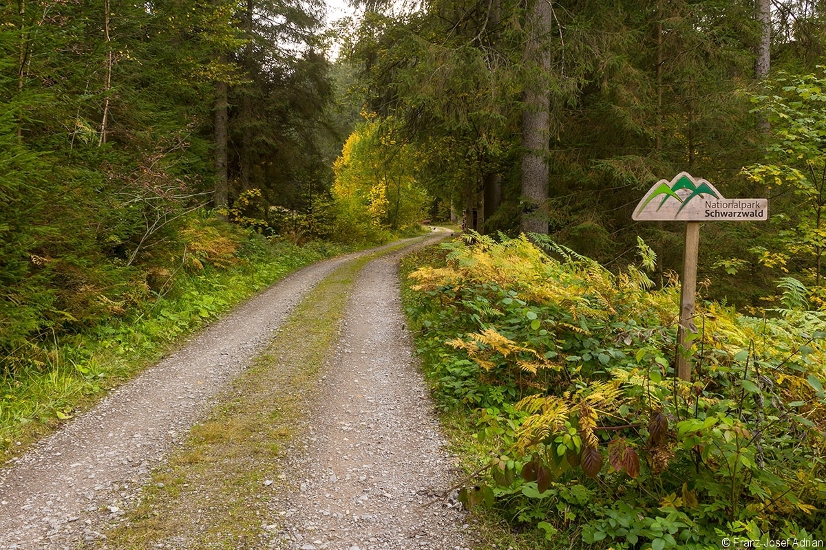 Schild_NLP_Schwarzwald