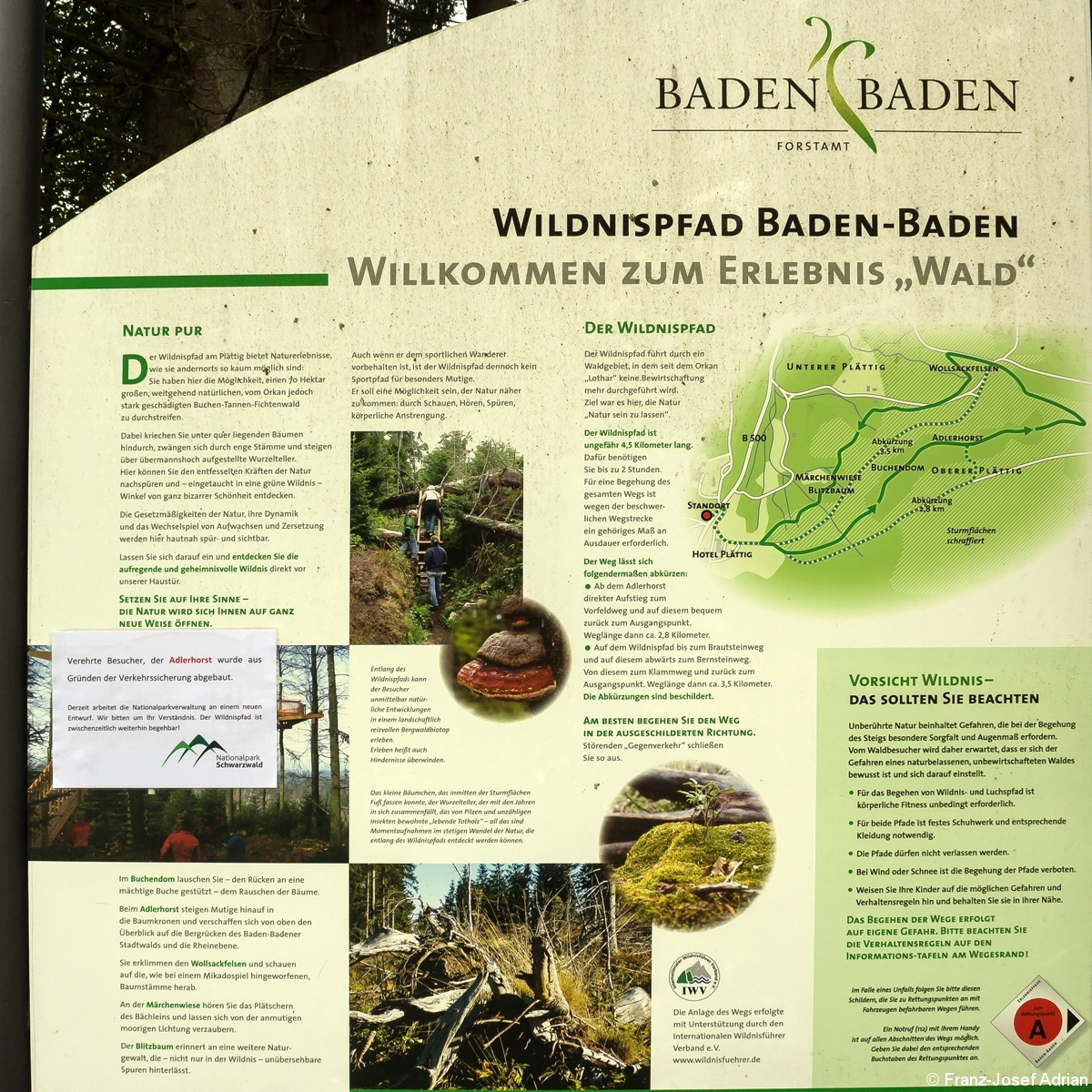 Wildnispfad