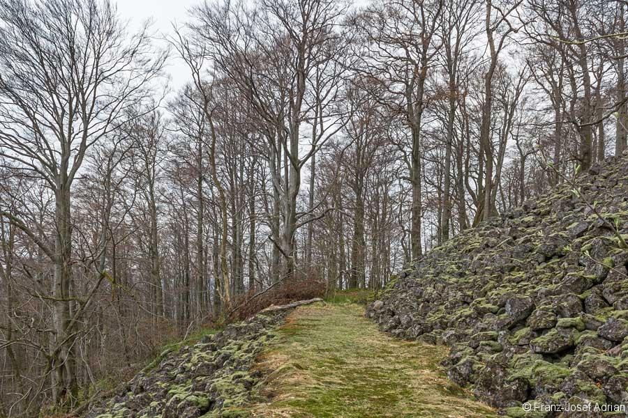 ehemaliger Forstweg durch die nördliche Gesteinsschutthalde
