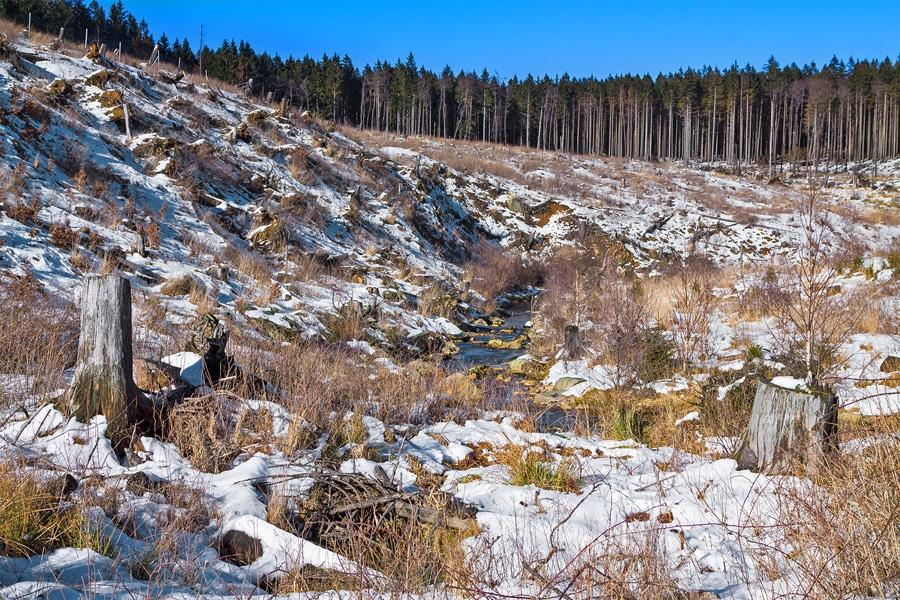 Meineckenberg_Erosion_1.jpg