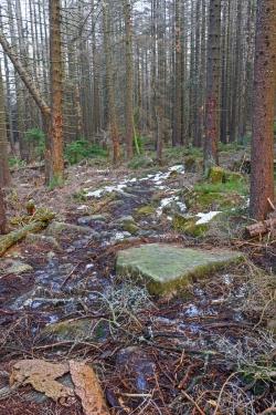 Überreste des mit Felsplatten befestigten Teil des Wegs im mittleren Abschnitt