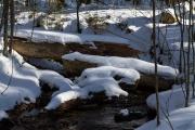 Mittelsteigbach im Winter