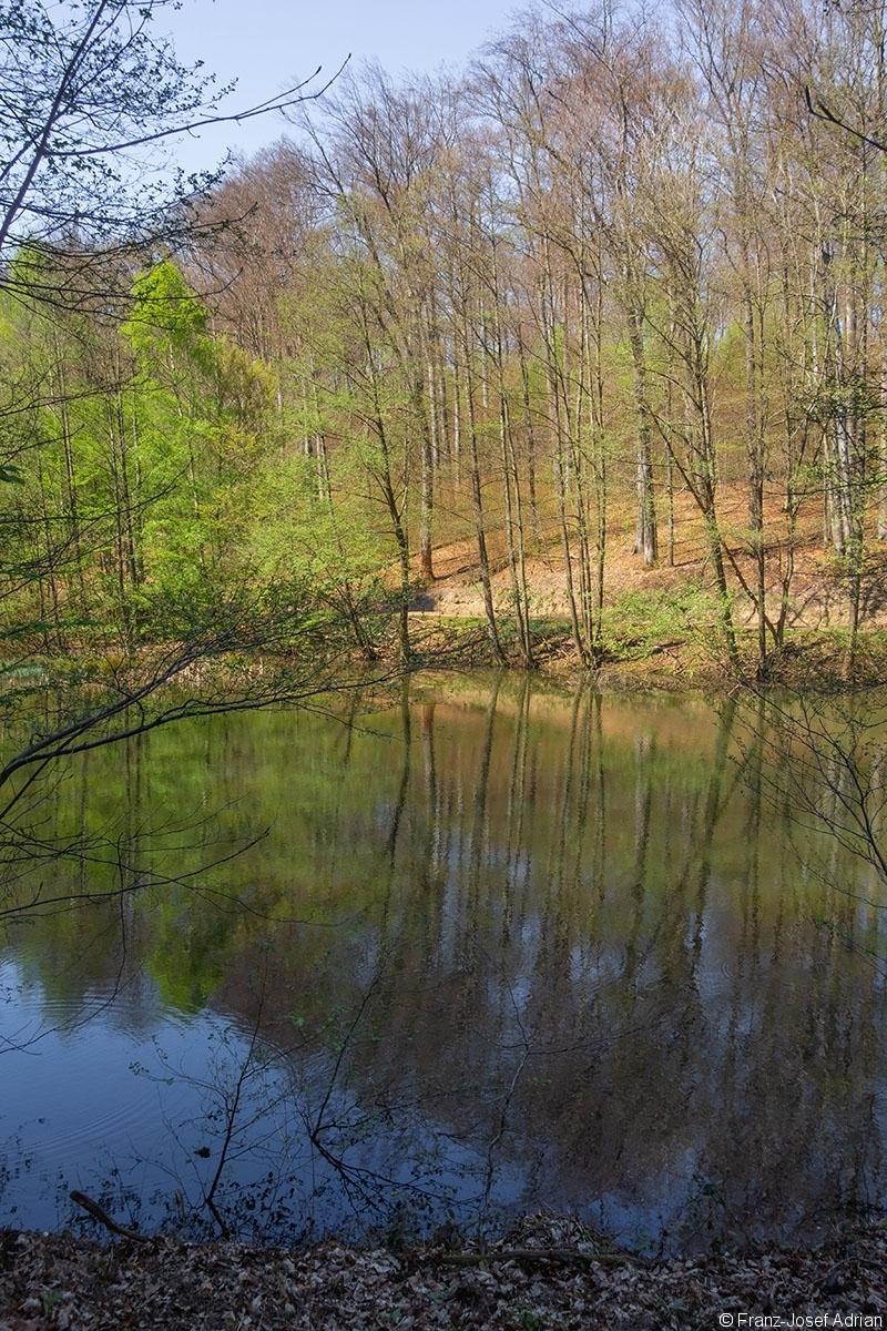 Hortenbachweiher