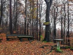 Bänke und Tische am Philosophenhügel