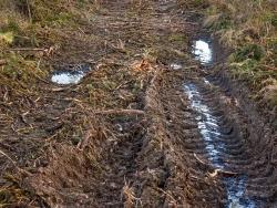 vernässte Bodengleise und Pfützen, keine Reisigauflage