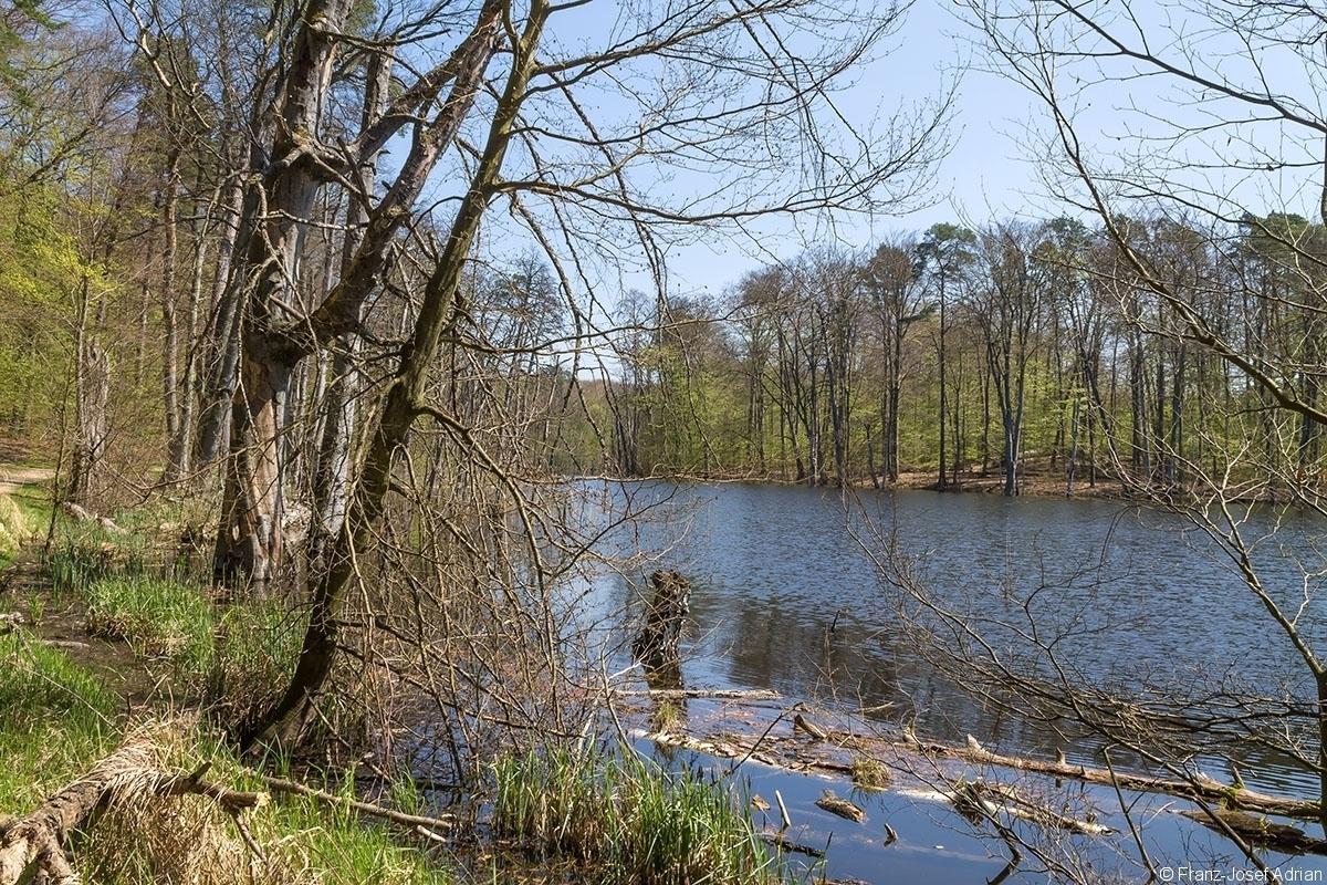 Schweingartensee_1