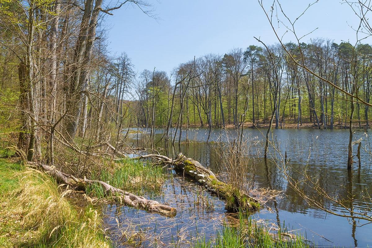 Schweingartensee_3