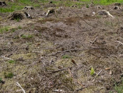 Schattenloser Boden