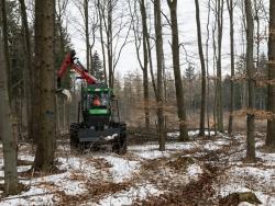 Forstrückeschlepper fährt kreuz und quer durch den Wald