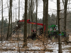 Forstrückeschlepper ergreift Kronenabfall