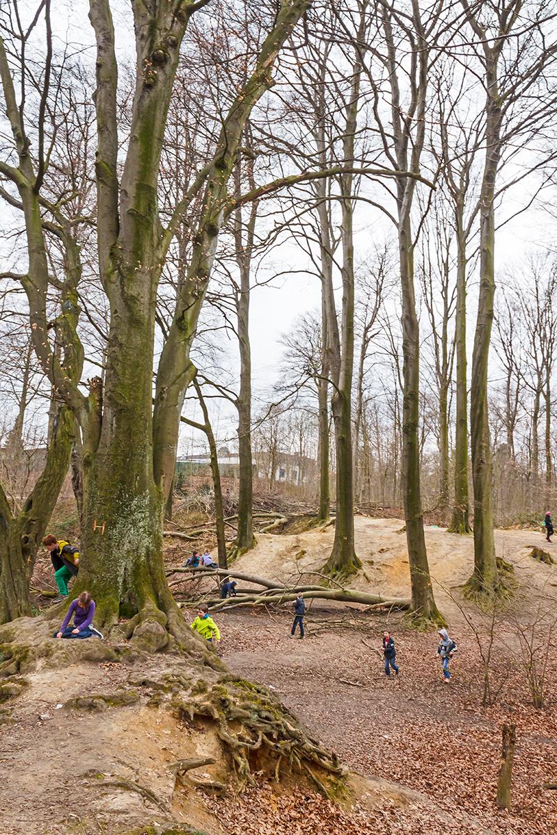 Altholzinsel als Kinderspielplatz