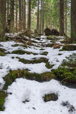 Stufen des Schneelochwegs im Winter