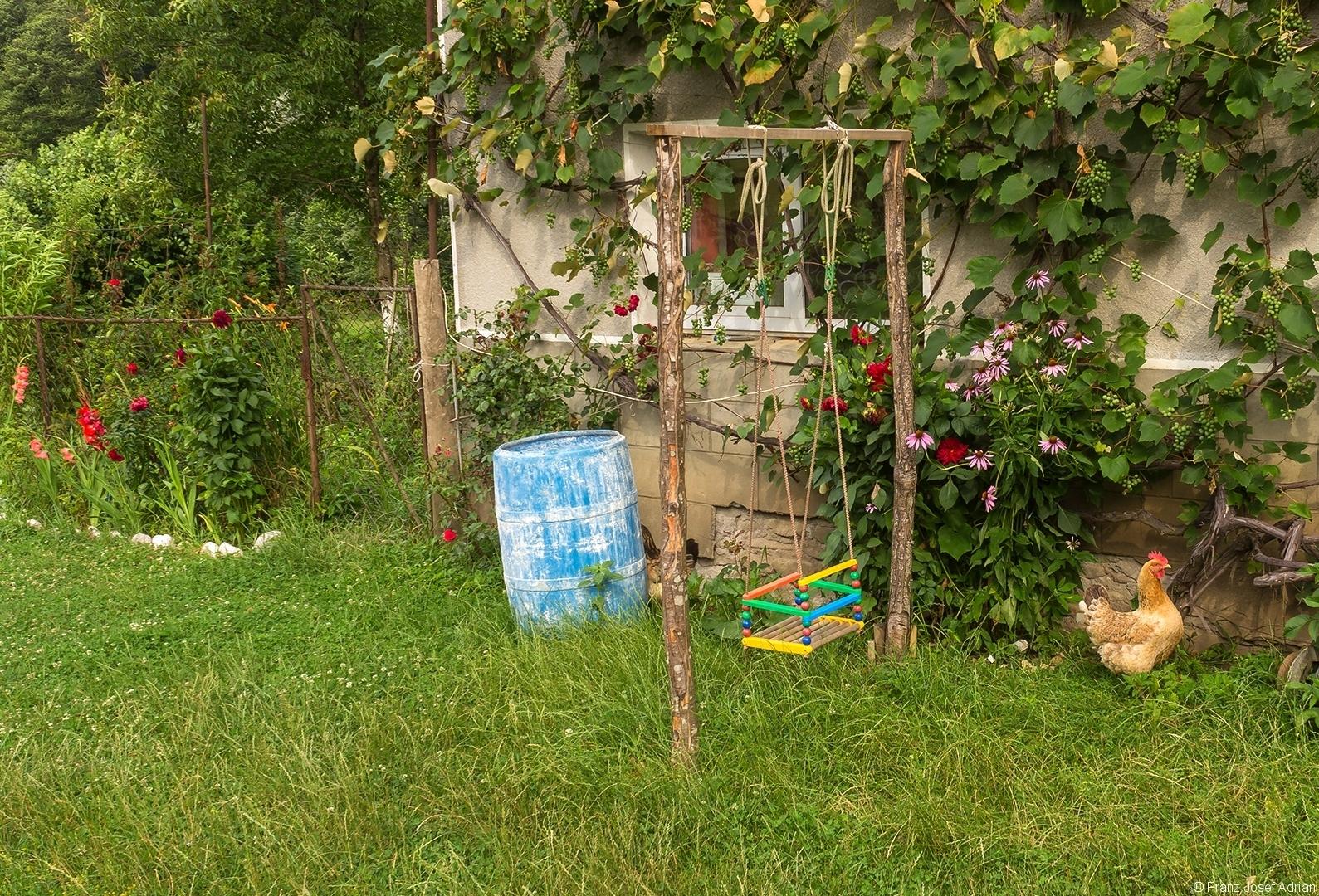 Blumenvorgarten und Weinreben am Haus