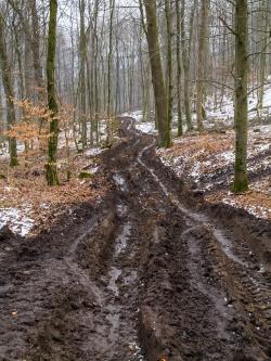 Zerstörter Forstweg mit 50 cm tiefen Bodengleisen