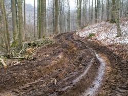 Verwüsteter Forstweg mit panzerbreiten Fahrspuren