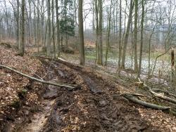 Verschlammter Forstweg mit 40 cm tiefen Bodengleisen