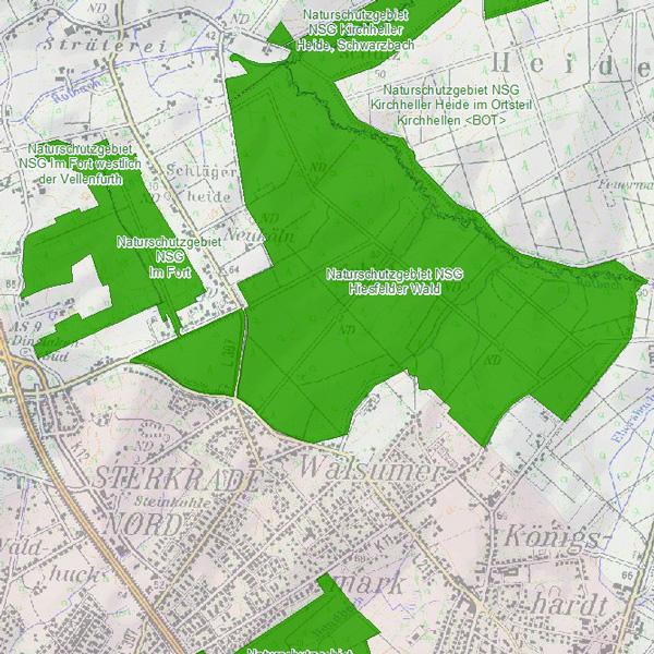 NSG Hiesfelder Wald