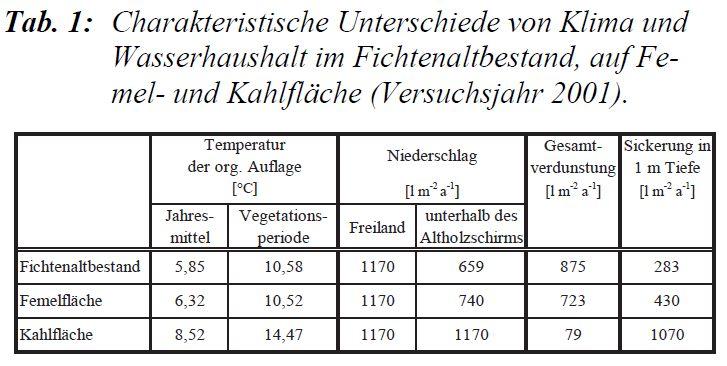 Temperatur_Kahlschlag