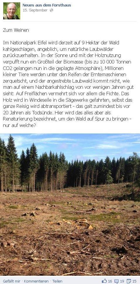 Zum_Weinen_Blog