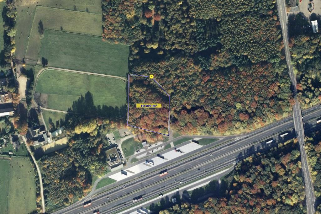 Luftbild Hohenhorst 1 Hektar
