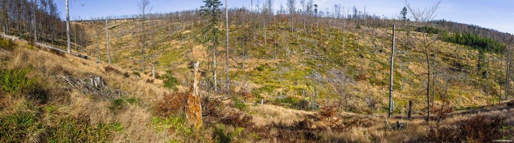 Rindelloch Panorama