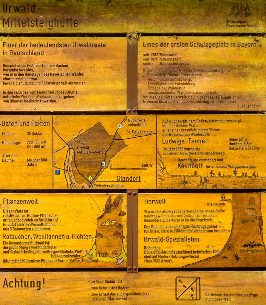 Informationtafel zum Urwaldreservat Mittelsteighütte