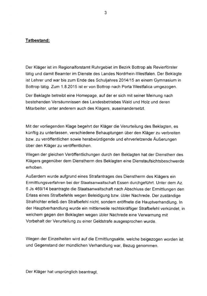 Urteil_Schmaehkritik_3